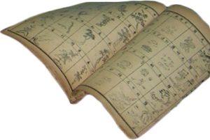 ALtes Buch Traditionelle Chinesische Medizin